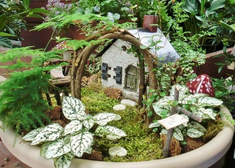 fairy-gardens-9